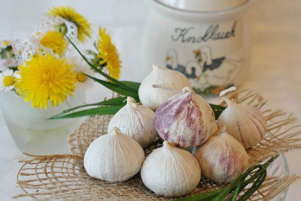 Bijelo povrće – neprijatelj infekcija