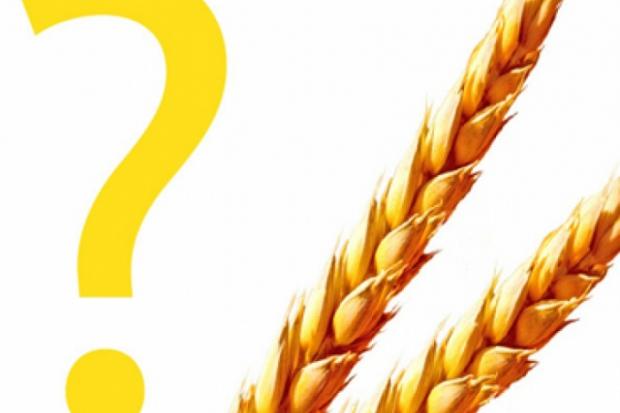 Koliko kalorija sadrže žitarice?