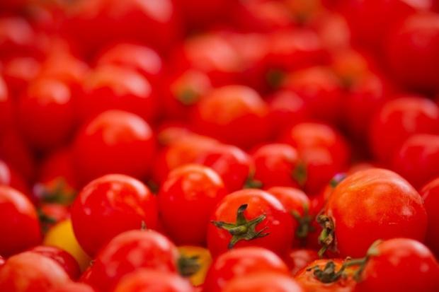 La Tomatina – bătaia cu roşii