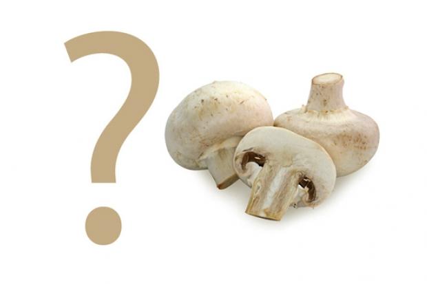 Calorii ciuperci: afla cate calorii sunt in acestea