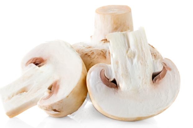 Misterul ciupercilor delicioase