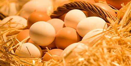 Количество калорий в яйцах