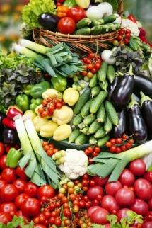Овощи – источник витаминов