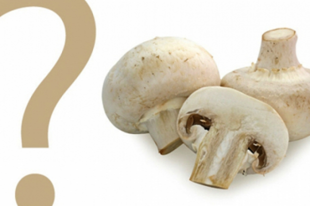 Количество калорий в грибах