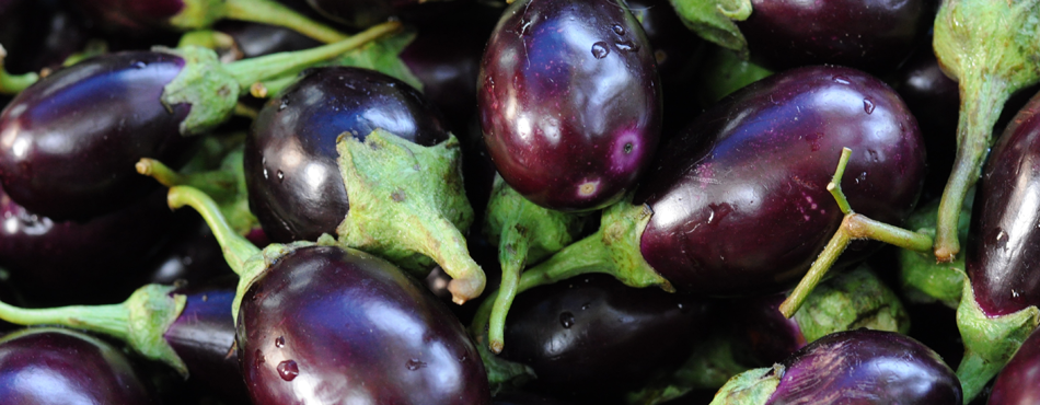 Meaning-of-Eggplant
