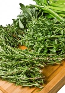 Різні трави на дошці сповнені вітамінами