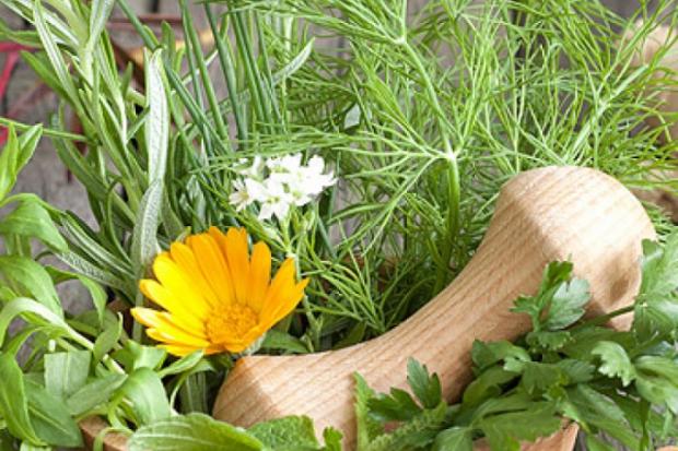Нові спеції для осінніх салатів