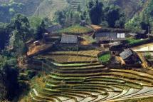 В'єтнамський город з рисом на горі в декілька ярусів